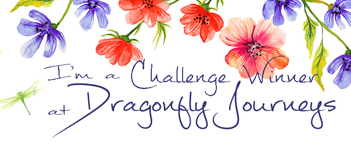 2 x Dragonfly Journeys Winner