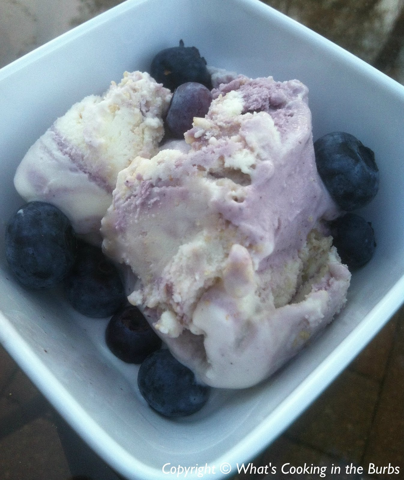 What's Cooking in the Burbs: Homemade Blueberry Frozen Yogurt