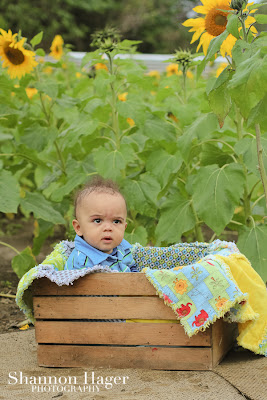 okinawa baby photographer, shannon hager photography, sunflower fields