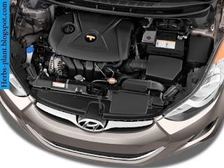 Hyundai elantra car 2012 engine - صور محرك سيارة هيونداى النترا 2012