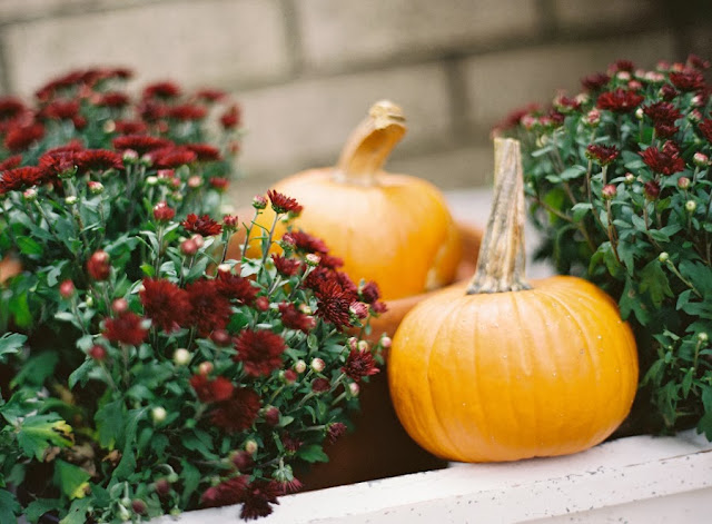 Small pumpkins at a fall themed al fresco dining party
