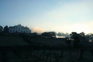 Quinta da Cruz em Soure