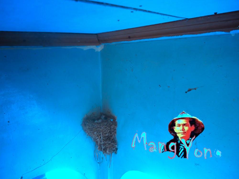 arang Burung layang - layang di tembok, by Blog Mang Yono