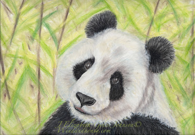 Panda In Pastel Video Workshop with Elizabeth Johnson