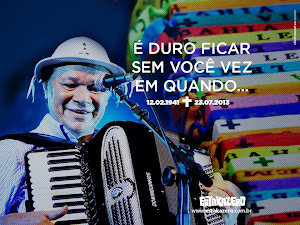Mestre dominguinhos