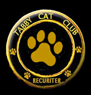 Are you a blogging Tabby?   WE WANT YOU !!!