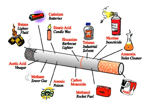 why cigarettes should be banned essay I strongly disagree with the statement 'smoking should be banned' to prove my point i have three strong points including, it helps people take there mind off things and temporarily relaxes them, governments make huge profits from taxes from cigarettes, people all around the world get jobs from the cigarette industry.