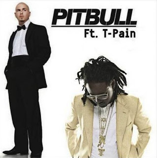 Pitbull - Shake Senora (feat. T-Pain) Lyrics