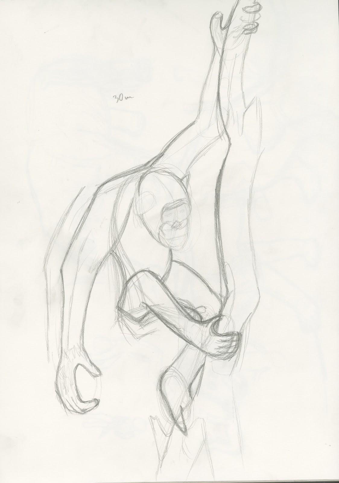 Observational Drawing 2: Week8 - Life Drawing - Non human anatomy