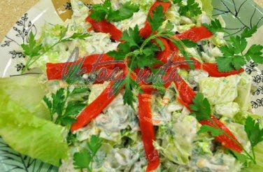 Turşulu Tavuklu Atom Salata Tarifi