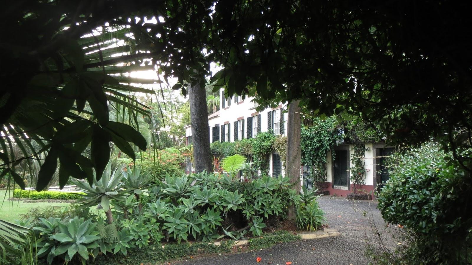 hortibus voyage parcs jardins et paysages de madere