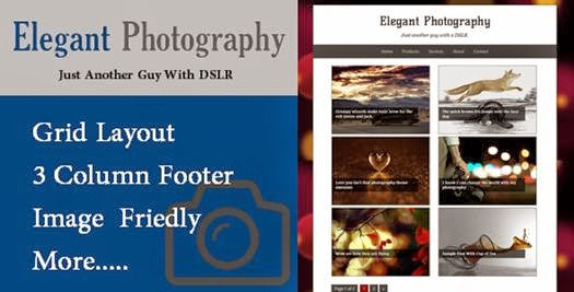 Download Elegant Photography Blogger-bwtemplate