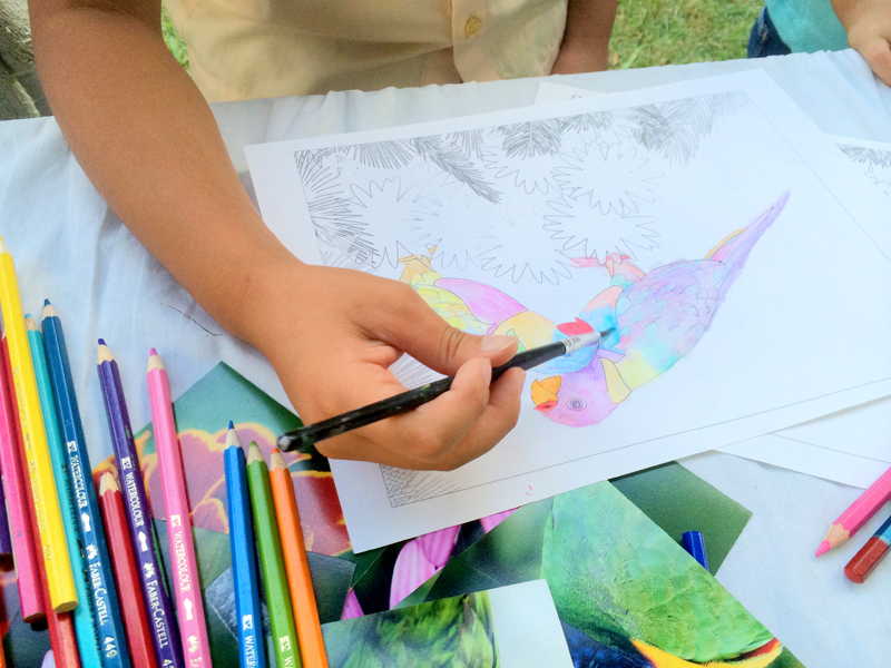 Colouring Competition at the Wonderful Wildlife Day
