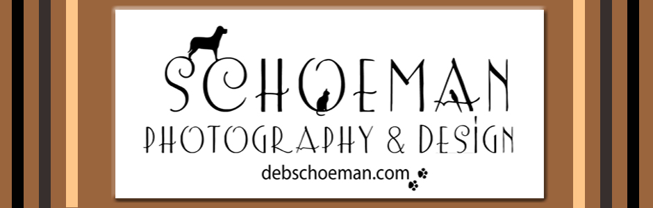 Deb Schoeman Photography