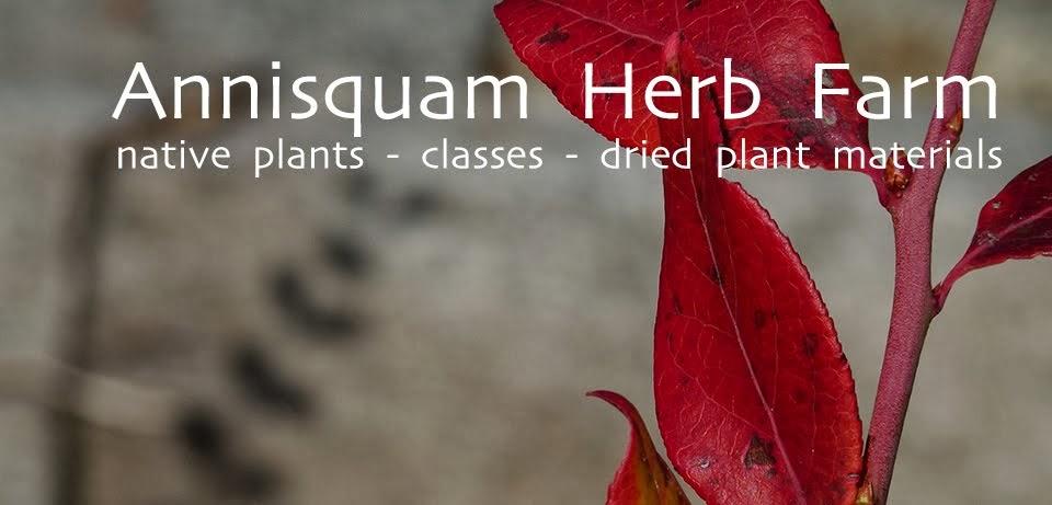 Annisquam Herb Farm