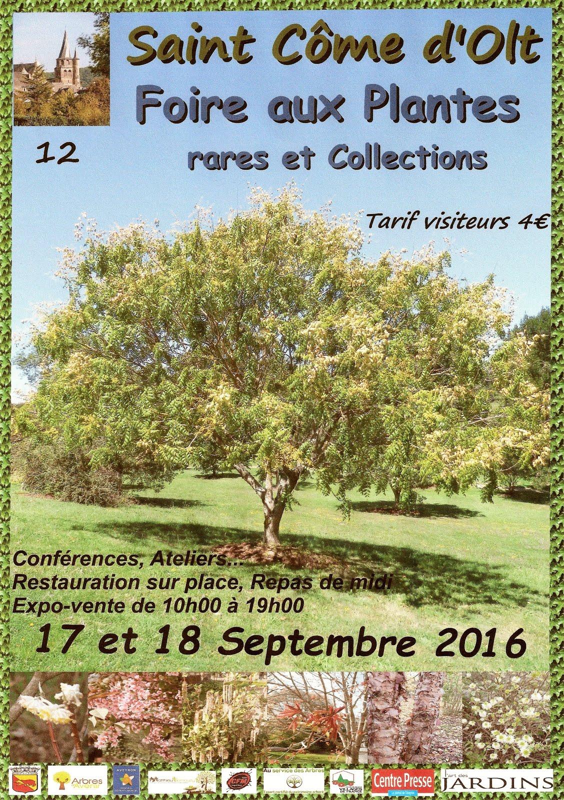 Foire aux Plantes rares et Collections en Aveyron