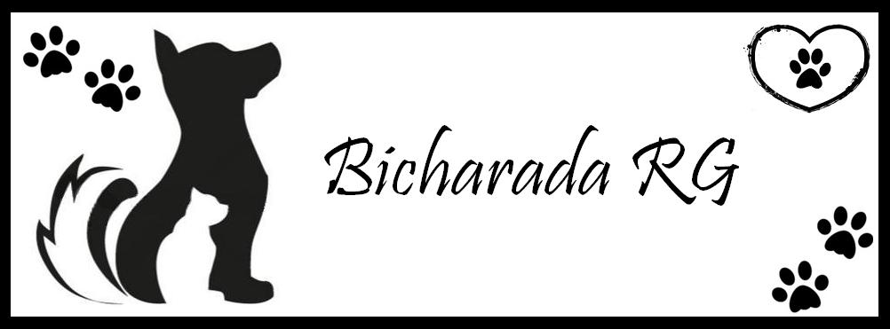 Bicharada RG