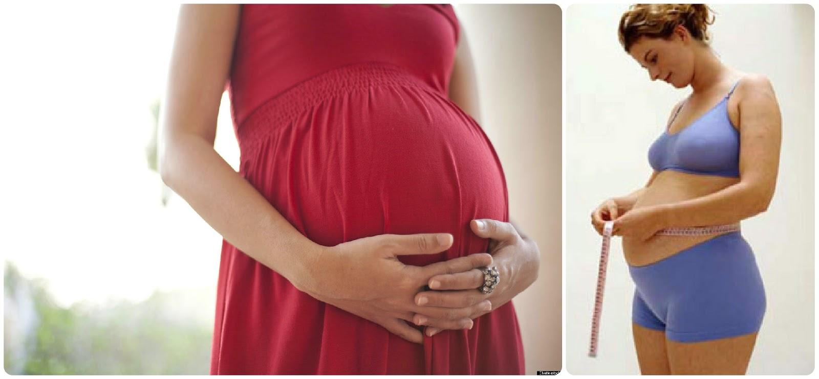 22 týden těhotenství, těhotenství