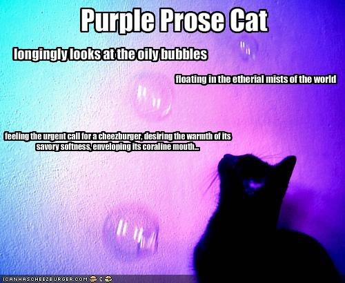 prose writing prompts