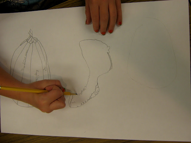 Contour Line Drawing Pumpkin : Art in the middle school october