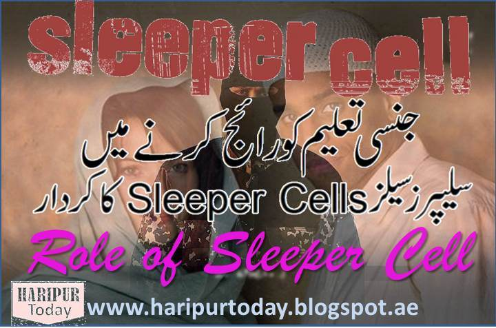 Sleep Cells