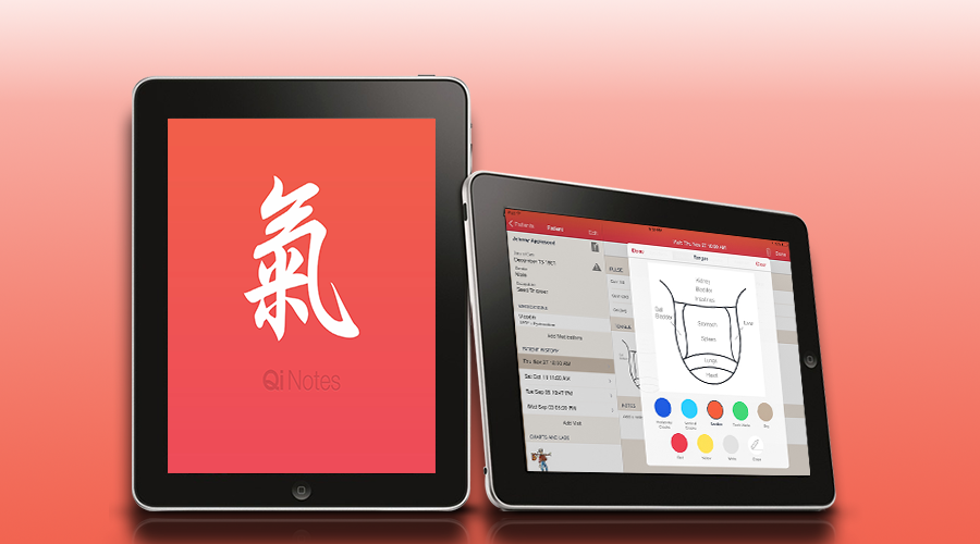 EMR and software for acupuncturists, iPad