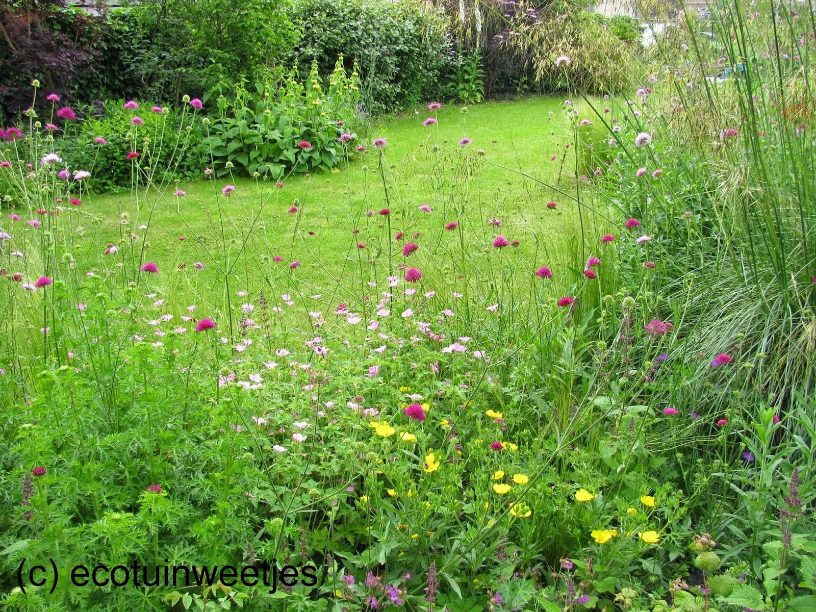 Tuin Laten Doen : Ecotuinweetjes een mooie tuin met weinig werk