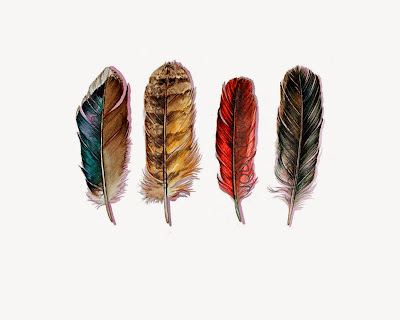 country feathers print by jodyvanb on etsy
