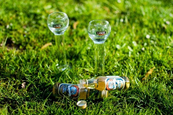 CULTURAL CURIOSITIES: Akevitt, or the Norwegian Travelling Liquor    Wanderwings.com
