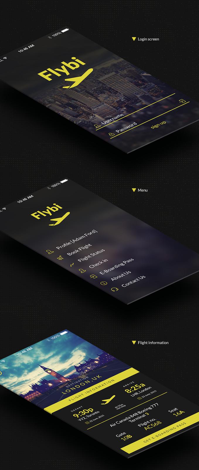 Flybi iOS App Screens UI PSD