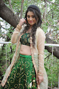 Ruchika rajput glam pics-thumbnail-12