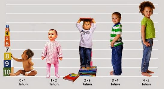 Peringkat Perkembangan Bayi