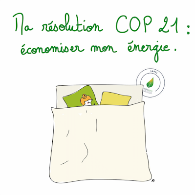 resolution cop 21 paris economie d'energie