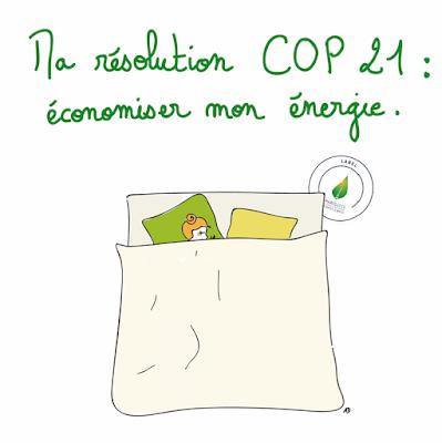 resolution cop 21 paris economie d'energie