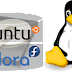 Dual Boot Ubuntu 11.10 (Oneiric) dan Fedora 16 (Verne)