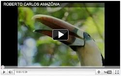 Amazônia - Roberto Carlos