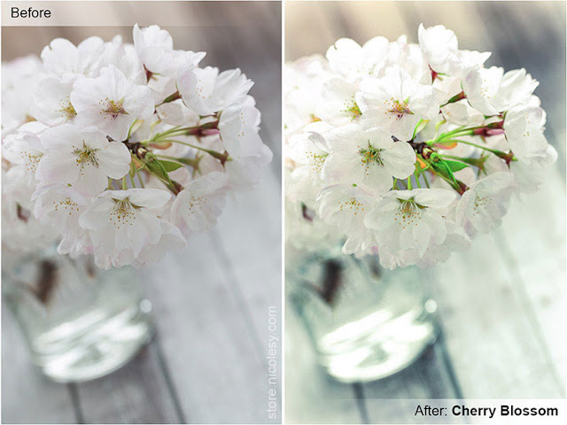 Cherry Blossom Lightroom Preset