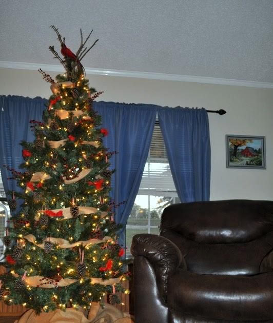 Design To Shine: Christmas Tree Tour