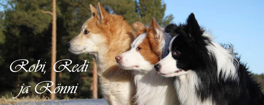 Robi, Redi ja Rönni
