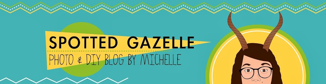 Spotted Gazelle | Photo & DIY Blog