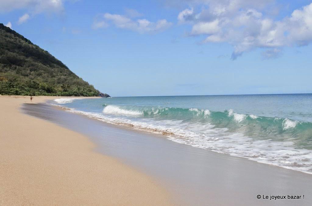 Guadeloupe  -Deshaies - plage de Grande Anse