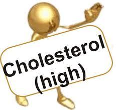 Obat Pereda Kolesterol Tinggi Tradisional