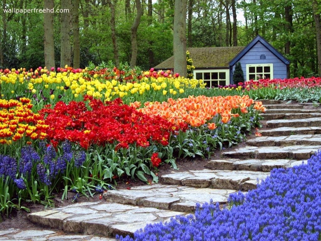 Decorating house exterior with beautiful home garden for Wallpaper home and garden