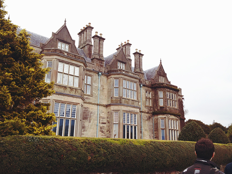 Killarney march 2015 Mucross House and Gardens