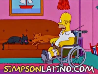 Los Simpson 12x20