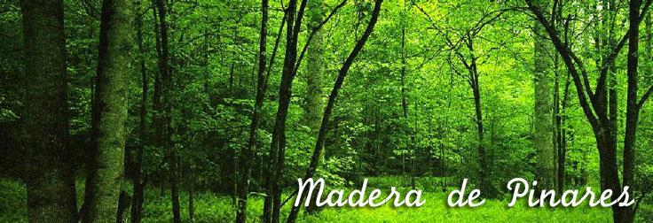 Madera de Pinares