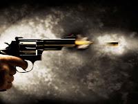 disparar, disparos, arma