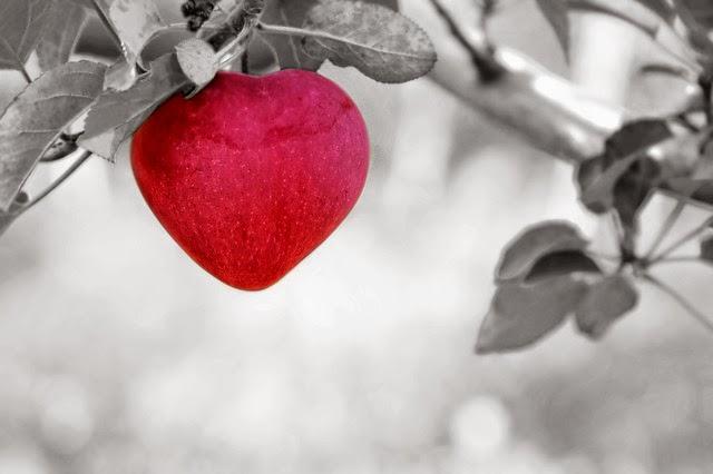 Tema sull'Amore