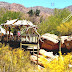 Arizona-Sonora Desert Museum - Tucson Az Desert Museum