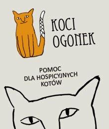 Hospicjum bezdomnych kotów